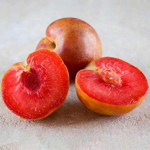 Нектакотум (абрикос+слива+персик)